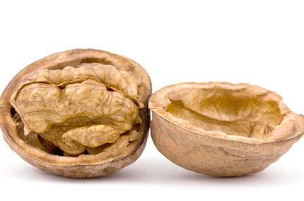 400x285-walnut